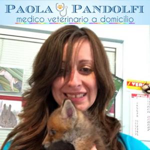 Paola Pandolfi - Veterinario - Arese