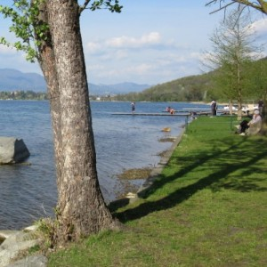 Lago di Comabbio - VA